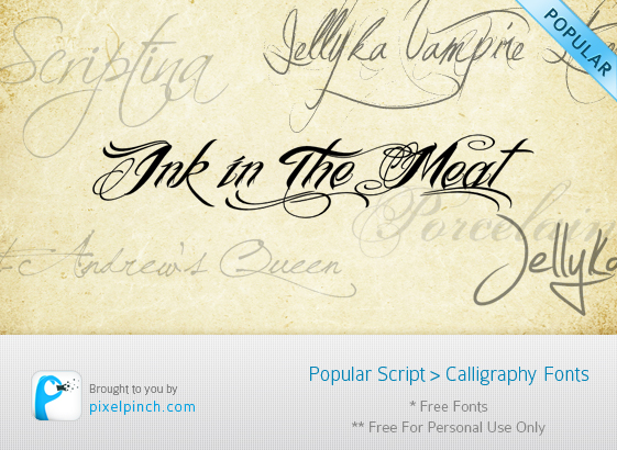Folder4 10 Most Popular Script & Calligraphy Fonts